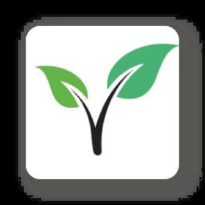 Vegsafe app logo
