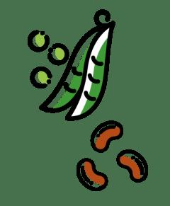 ilustração de leguminosas